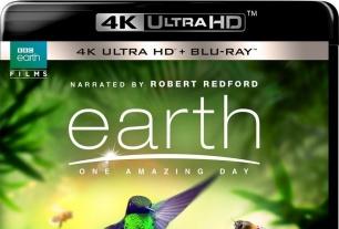 纪录片王者BBC!地球:神奇的一天(2017)「4K UHD破解版」(带国语中字!)