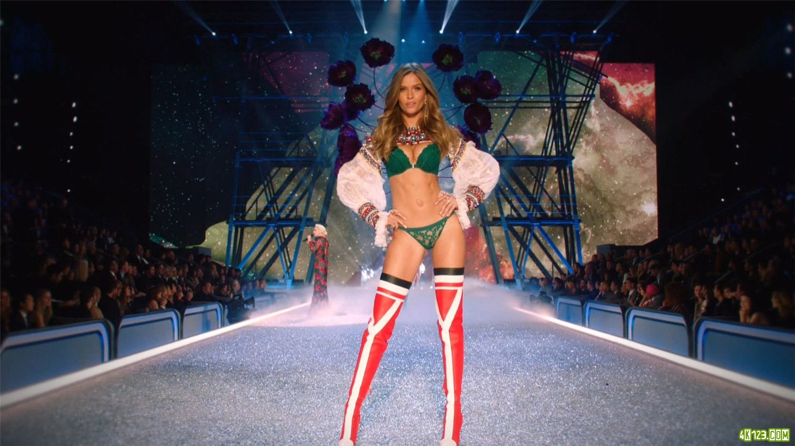 The.Victoria's.Secret.Fashion.Show.2016.1080i.HDTV.40MBit.MPEG-2.DTS-HDMA5..jpg