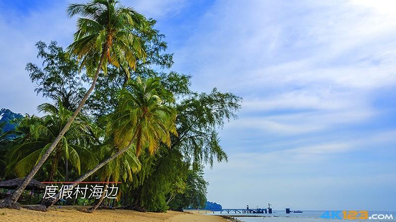 印象马来西亚 4K(HDR)-00-01-00-123.jpg