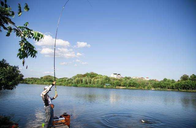 为什么电视上总能钓到大鱼,而你钓不到?这些秘密电视台不敢说