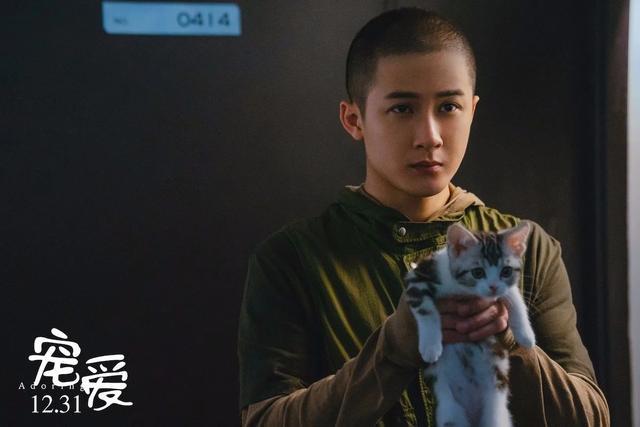 2020年第一部众星云集的烂片!这电影最值得看的是一条狗和一只猪